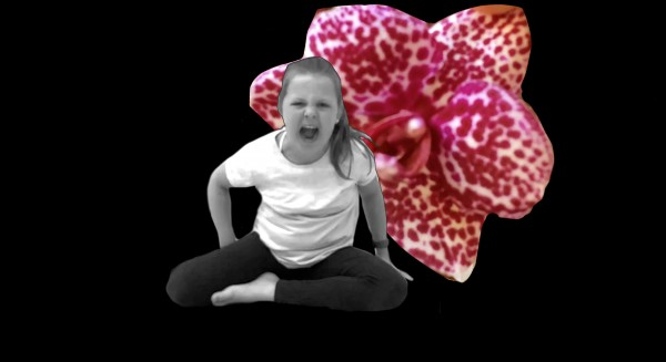 girl and orchid 2